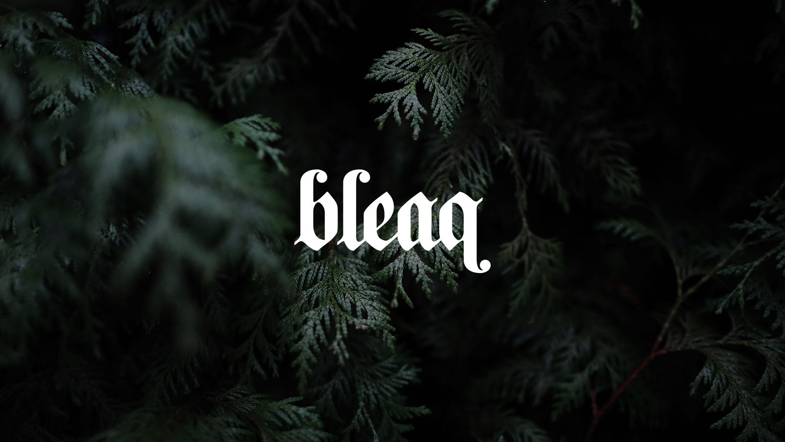 projects-branding-bleaq-01